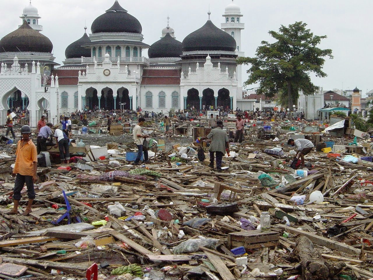 Earthquake in Aceh, Tazkia Students Make Fundraising for the Victims